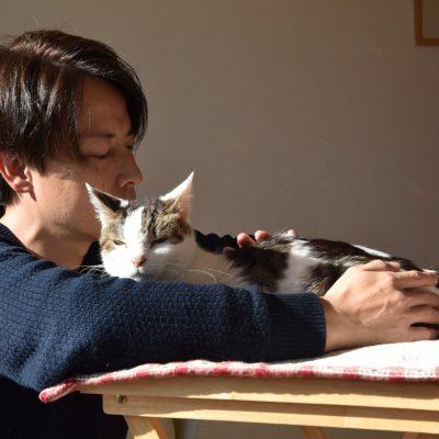 家族が安心する猫の整復